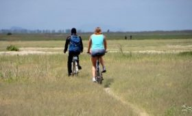 Cycling Tour in Lake Manyara