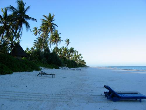 Zanzibar East Coast Pristine Beach - Beach Holiday